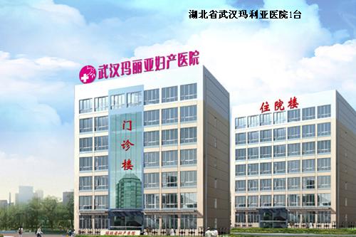 湖北省武汉玛利亚医院 1台